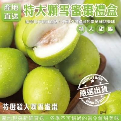 【天天果園】台灣LV頂級精品蜜棗12入禮盒2盒(每顆約120g)