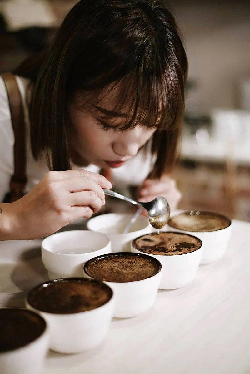 感官訓練體驗・咖啡風味萃取濃度判別・Condor cafe 康朵咖啡