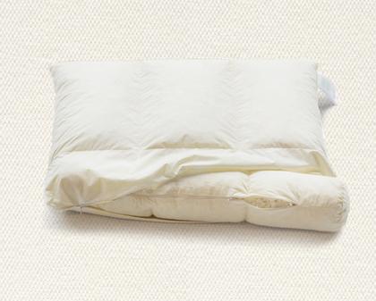 頸椎修復枕(2入5折超值價3500元)
