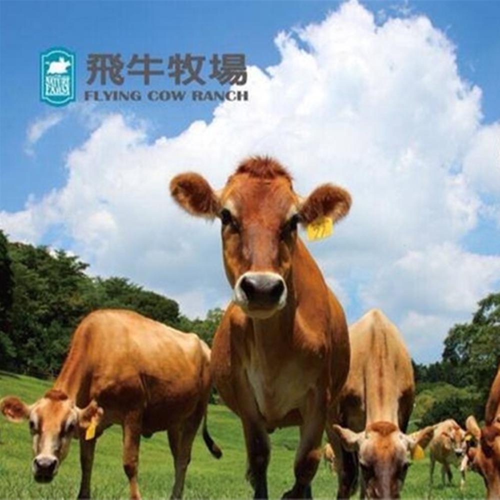 飛牛牧場 單人入園全票+彩繪肥牛DIY