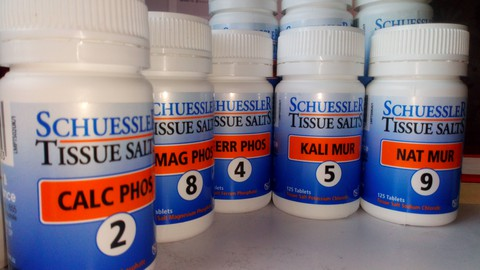 Introduction to Schuessler tissue salts