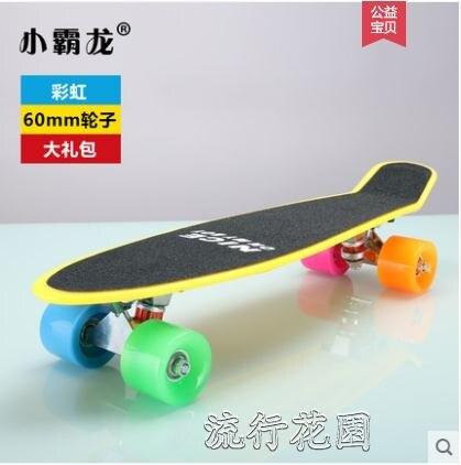 專業小魚板四輪滑板成人初學者兒童青少年男女孩成年6-12歲滑板車