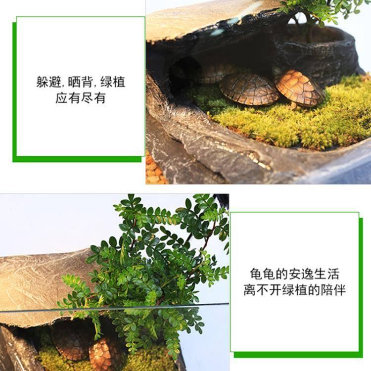 烏龜缸帶曬臺水陸缸玻璃小型中型巴西龜缸養龜缸養烏龜專用缸魚缸
