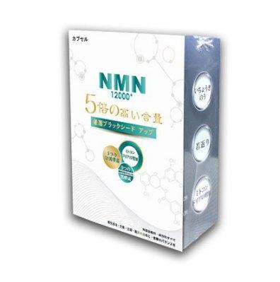 元氣之泉 NMN 12000+活力再現膠囊 (加乘專用版)效期:2023.10【0102141】【小資屋】