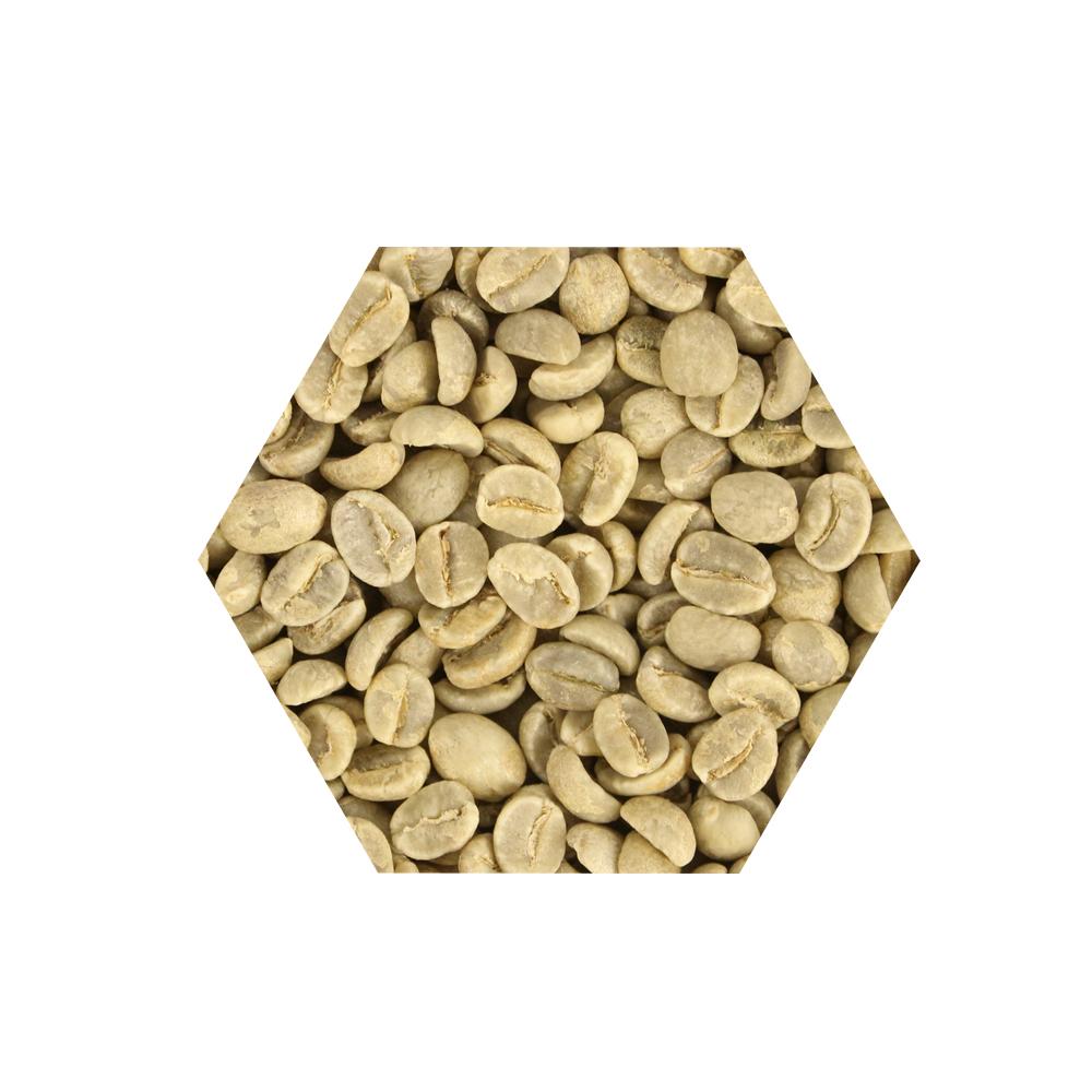 E7HomeCafe一起烘咖啡 坦尚尼亞吉利馬札羅AA水洗處理咖啡生豆500克(MO0052RA)