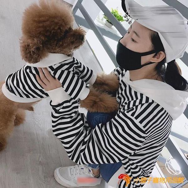 寵物主人親子裝 大狗狗條紋連帽衫貓咪衣服拉布拉多大型犬衣服【小獅子】