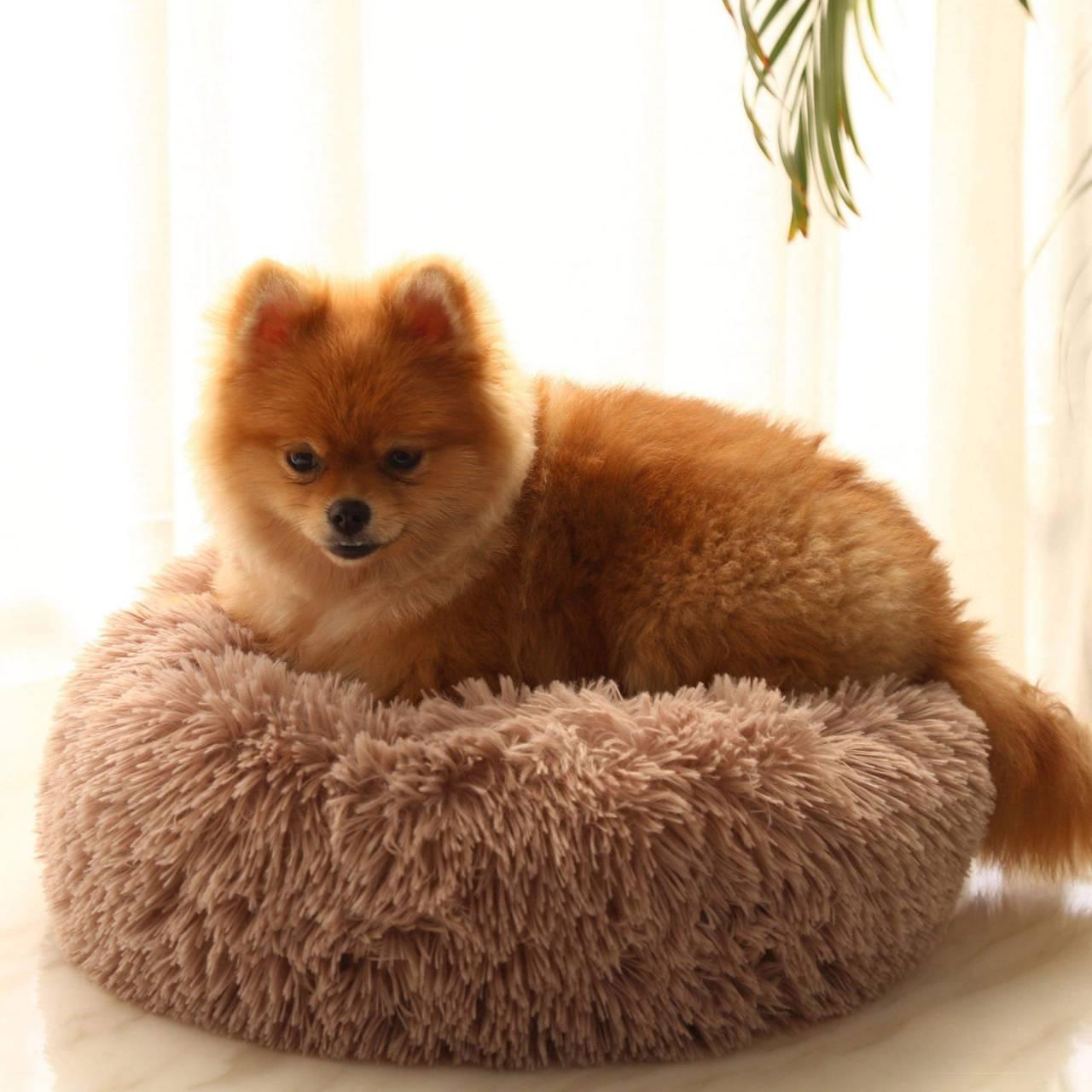 寵物深度睡眠窩  寵物床 狗床 貓床
