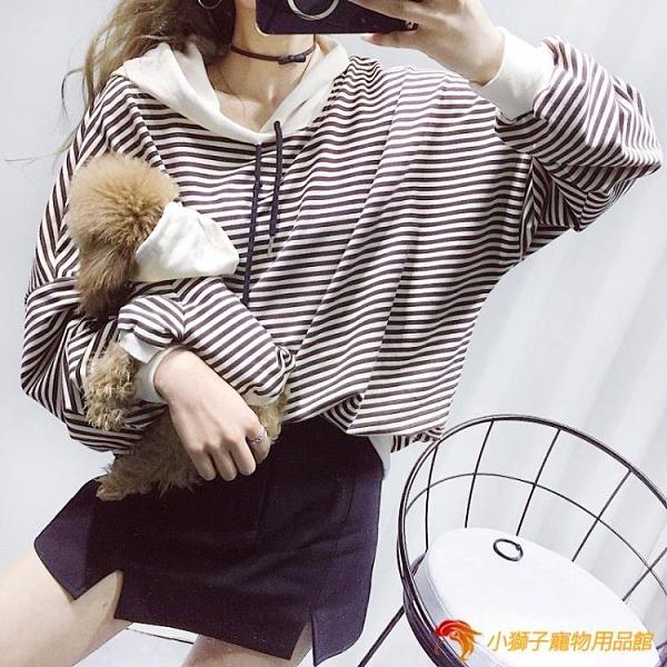 寵物親子裝 狗狗衛衣條紋泰迪小型犬貓咪衣服連帽衫【小獅子】