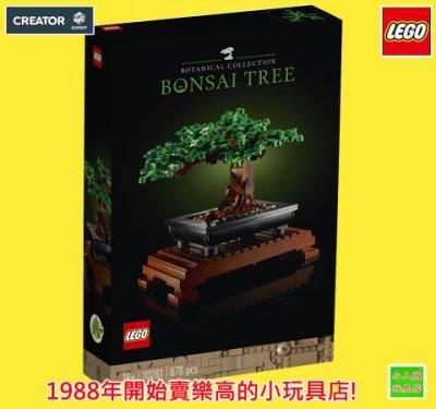 LEGO 10281盆景樹 綠葉&日本櫻花樹 創意系列Creator 原價1799元 樂高公司貨 永和小人國玩具店