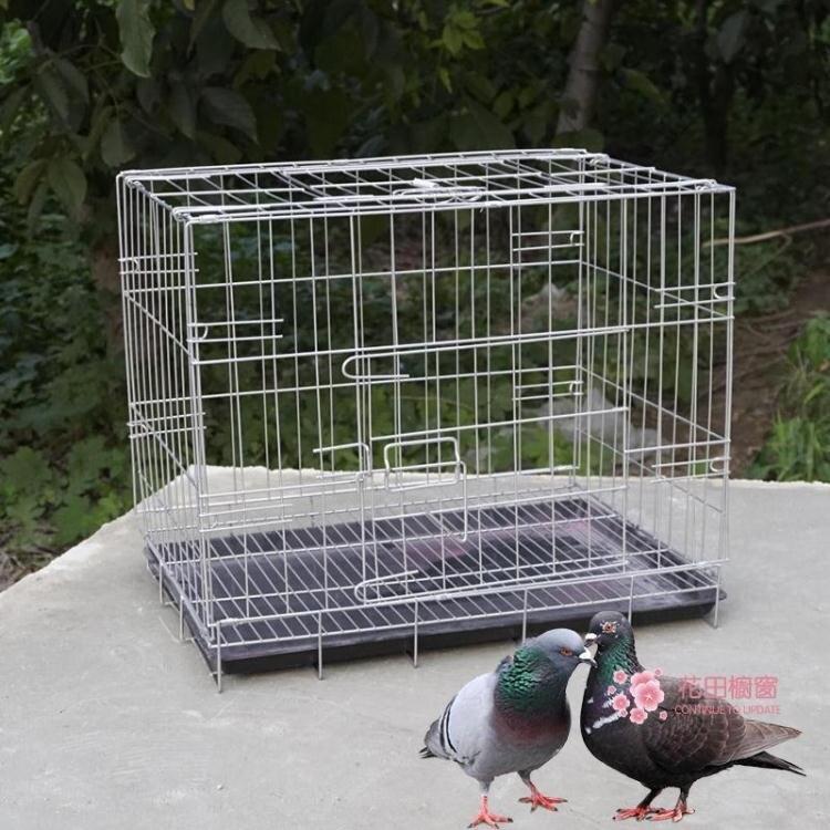 鳥籠 加粗不銹鋼色鳥籠子大號養殖鴿子小寵物雞鴨籠子特大號鐵籠子T【全館免運 75折鉅惠】