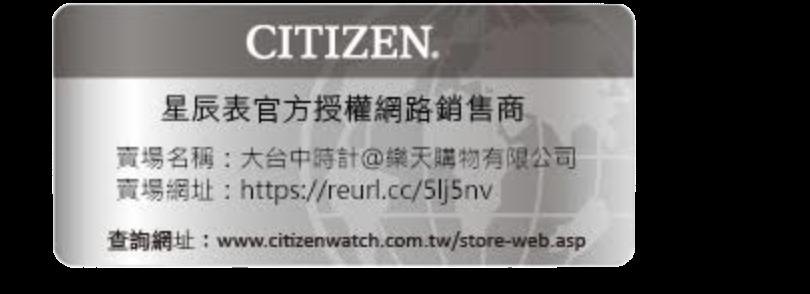 CITIZEN 星辰 AO3030-24A 店鋪限定時尚型男腕錶 /皮帶款 銀面 44mm