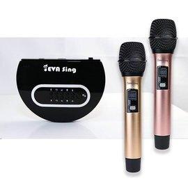GloryKylin EVASing家庭K歌 電視專用 無線 麥克風 影音套組 雙麥組 ES-01-1