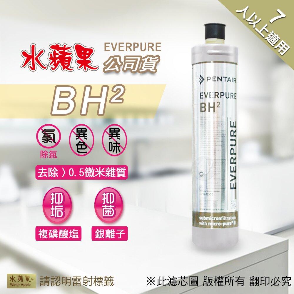 【水蘋果】水蘋果公司貨 EVERPURE BH2 淨水濾心(家用型)