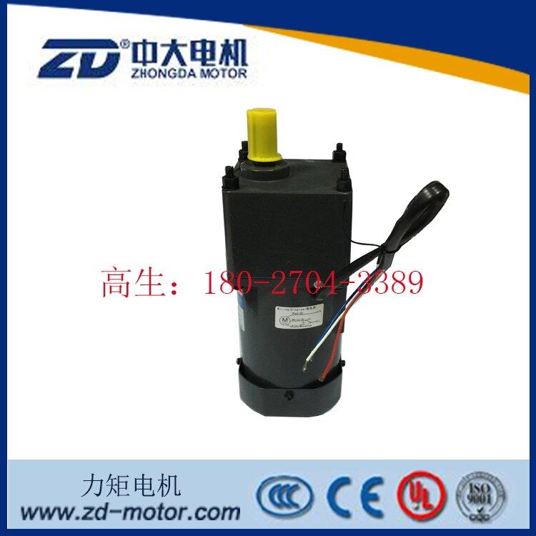 ZD中大40W力矩電機5TK40GU-CFP/5GU 12.5KB堵轉馬達1入