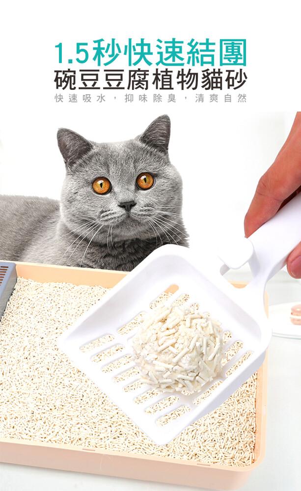 1.5秒快速結團 碗豆豆腐植物貓砂