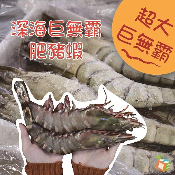 深海巨無霸鮮美肥豬蝦350g±10%(2隻/袋)
