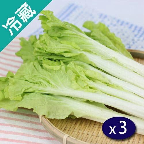 【產銷履歷】鮮採小白菜(250g5%/包)X3【愛買冷藏】