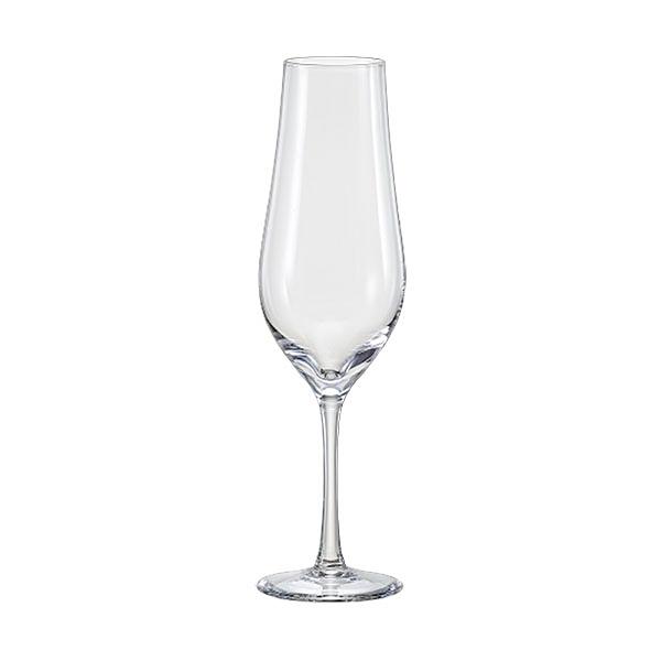 《BOHEMIA波西米亞》Tulipa鬱金香系列 / 香檳杯170ml(2入)
