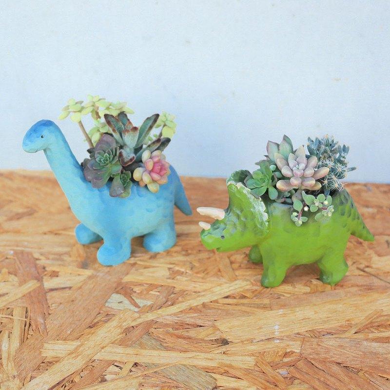 荳荳多肉植物與小雜貨-可愛恐龍多肉植栽組合