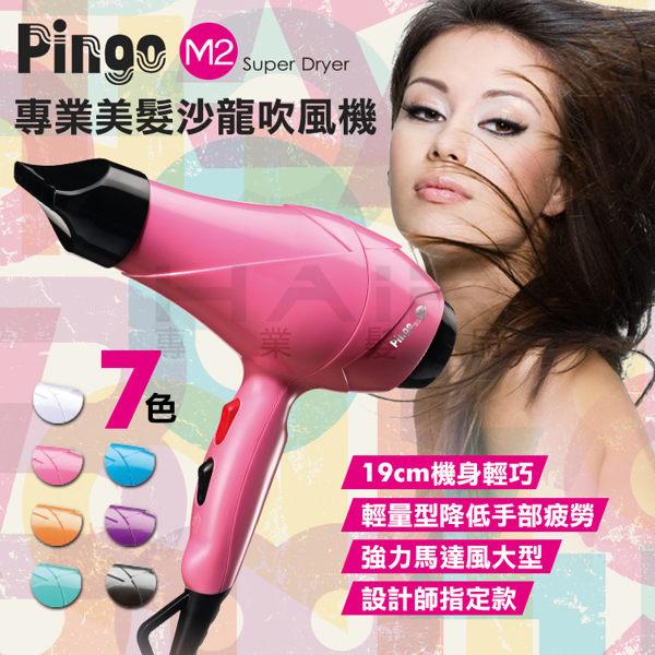 Pingo台灣品工 專業美髮沙龍吹風機M2