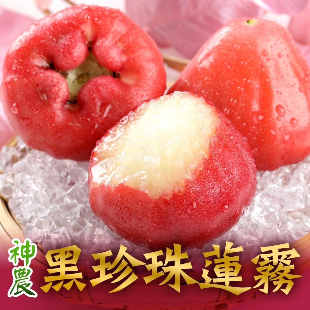 愛上生鮮 神農老饕黑珍珠蓮霧(12/3箱)香甜多汁 產地直送 水果 鮮果 禮盒(4台斤/箱)廠商直送