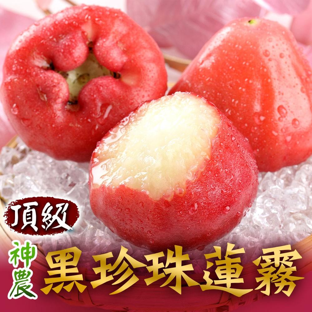 愛上生鮮 頂級神農黑珍珠蓮霧(12/3箱)香甜多汁 產地直送 水果 鮮果 禮盒(3台斤/箱)廠商直送