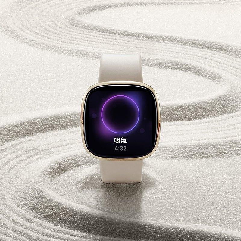 Fitbit Sense 健身手錶-白月光色