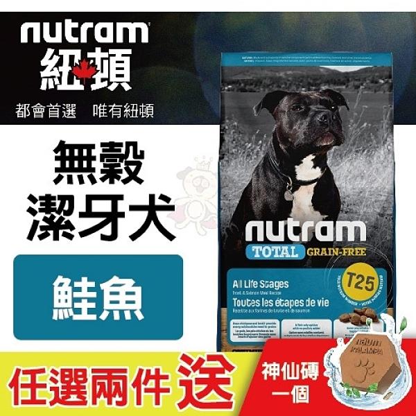 【任選兩件送神仙磚*1】*KING*紐頓nutram《無穀全能-潔牙犬 鮭魚配方T25》2kg