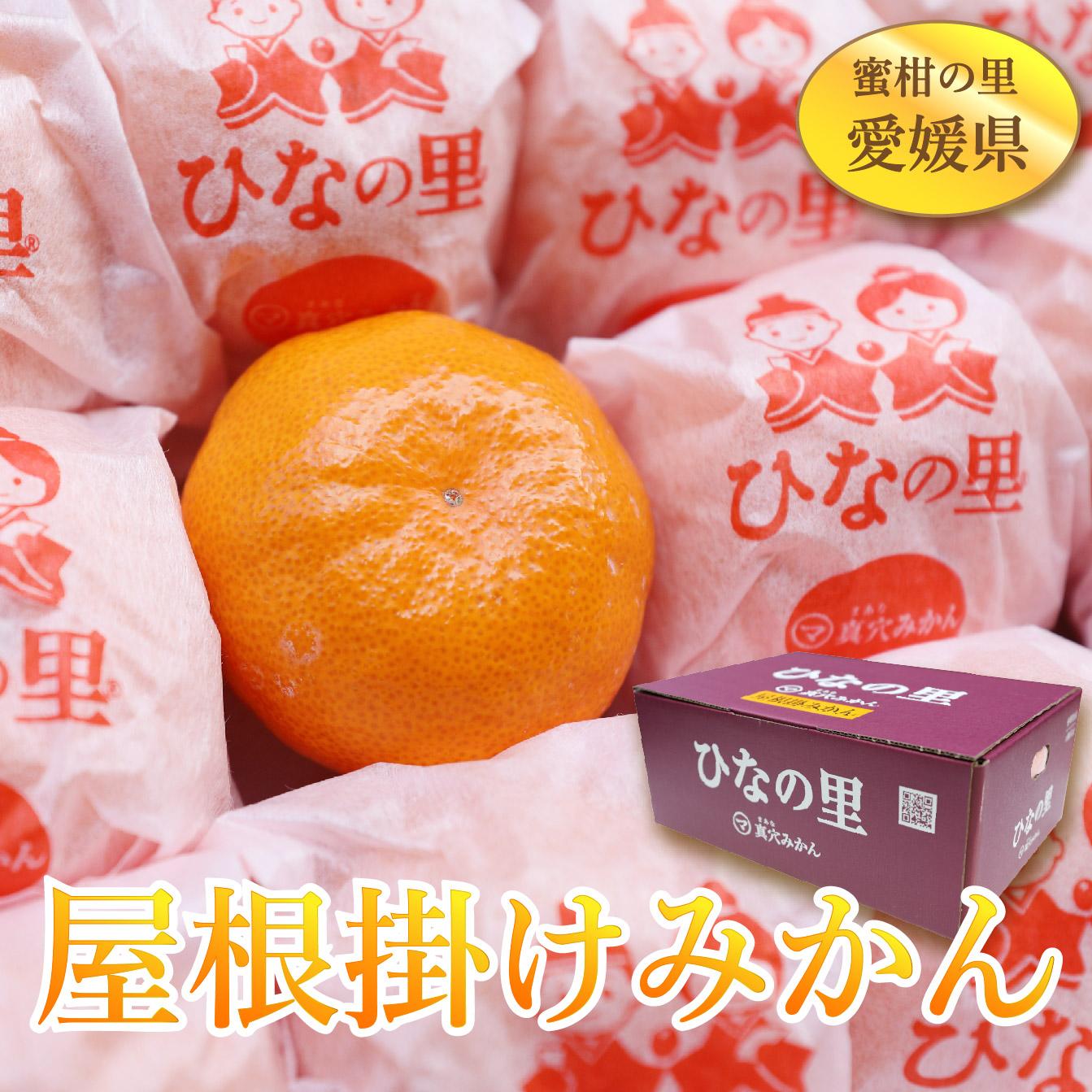 【頂級日本屋根掛蜜柑】💥最高紫盒等級💥日本原裝禮盒
