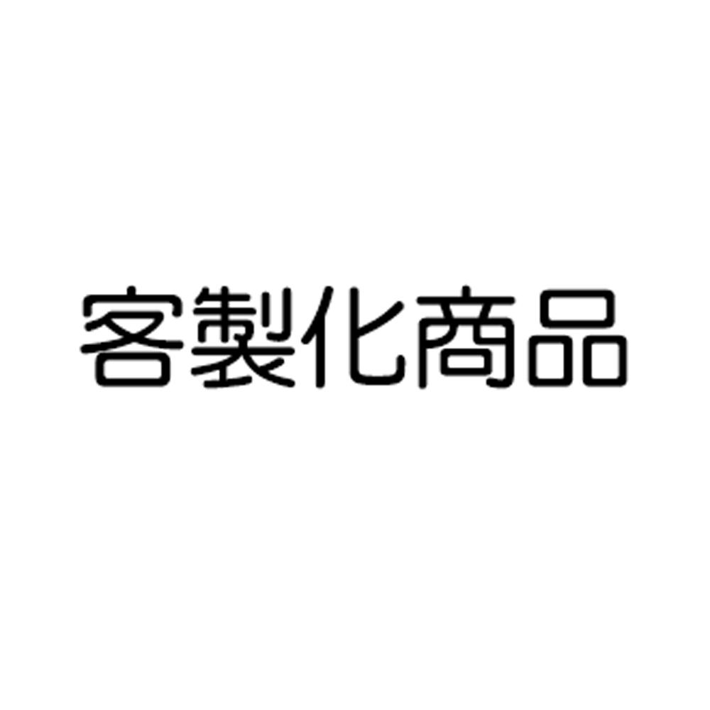 【一次換到好】LG 超淨化大白清淨機水洗濾網2入組【OriginalLife】超淨化長效可水洗