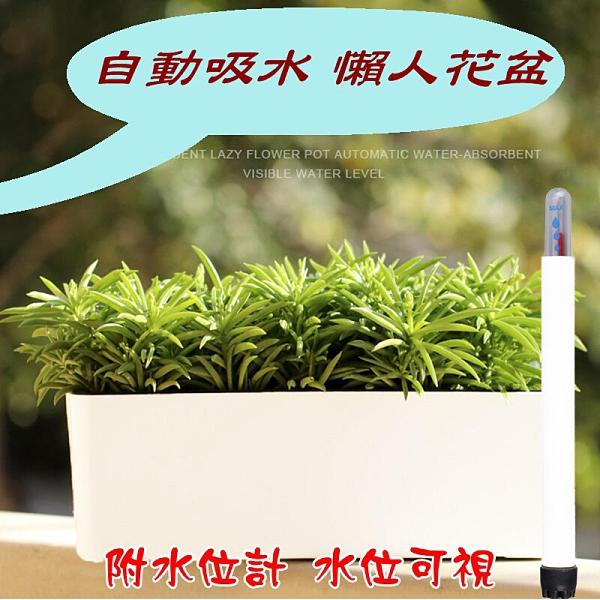 【JIS】N136 長方形懶人花盆 附水位計 多肉花盆 種菜盆 草莓 波斯菊 自動吸水 自動灌溉花盆
