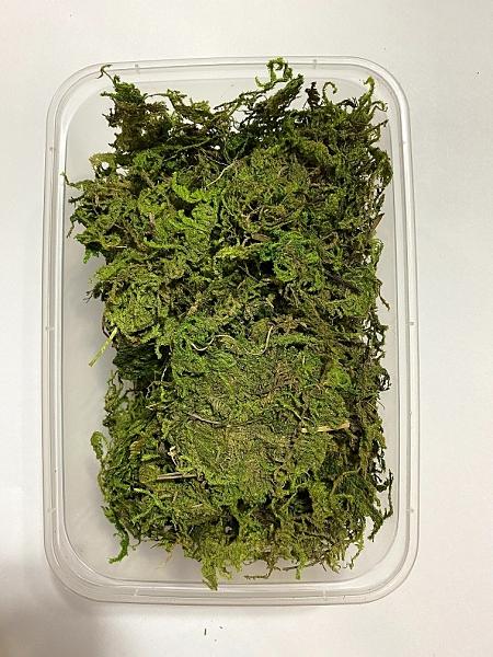 青苔水草,乾苔蘚,一份30克,(會有雜質)如圖盒裝