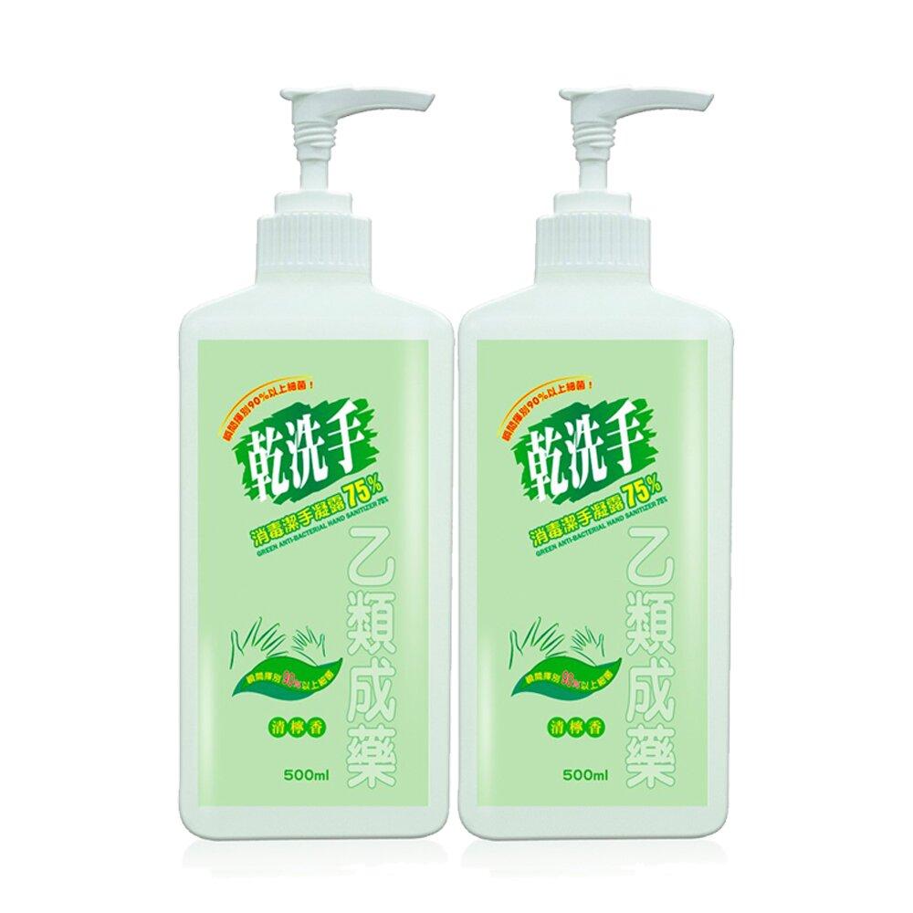 綠的GREEN 乾洗手消毒潔手凝露75% 500mlx2瓶 (乙類成藥)