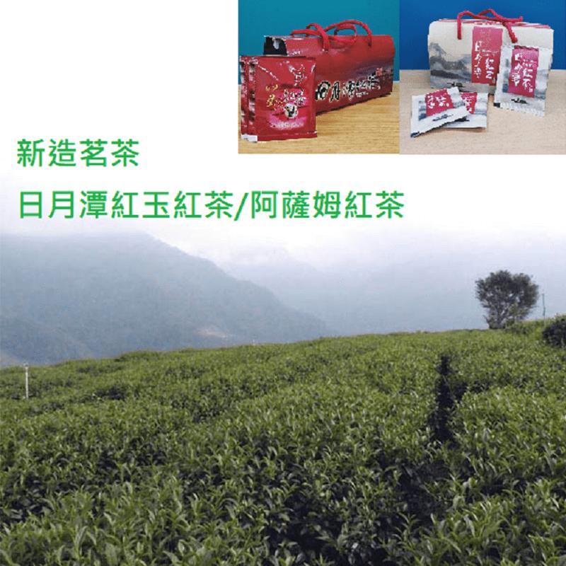 【新造茗茶】精選日月潭紅玉紅茶極品袋茶包(30入/盒)TEA035(64 入)
