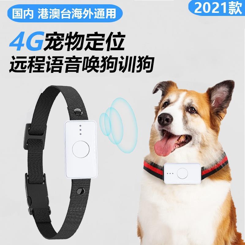 【廠家直銷】4G寵物定位器GPS訓狗儀遠程呼喚獵犬追蹤防丟北斗訂位項圈海外用D
