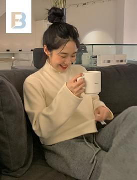 韓國空運 - Crepe Warm Turtleneck Cropped T-shirt 長袖上衣