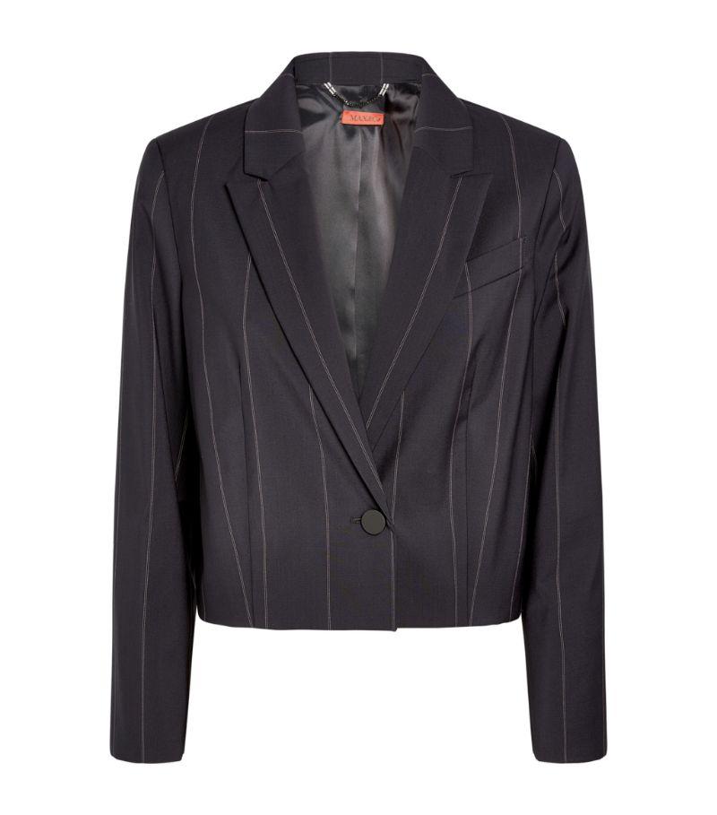Max & Co Cropped Pinstripe Blazer