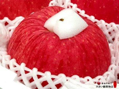 ※宏麟水果行※產地直送 日本青森縣 世界一蘋果原裝件11入 本島免運