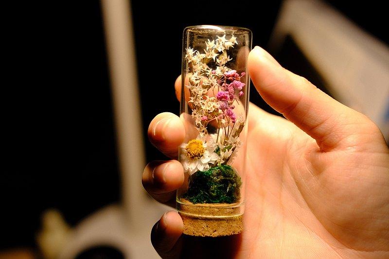 瓶中乾燥花 許願瓶 裝飾 擺設