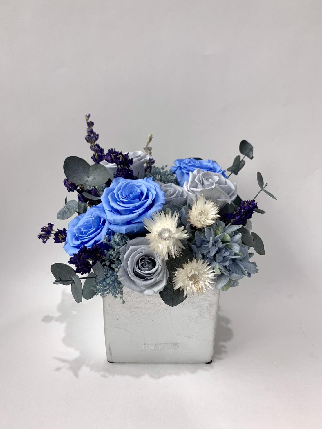 銀色天空 恆星盆花 (D&M銀色方型花器)