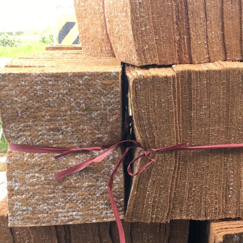 灰鸚巢箱專用繁殖椰子墊