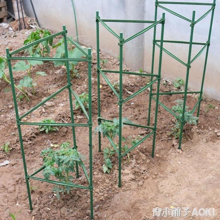 黃瓜架西紅柿番茄攀爬支架爬藤植物支架茄子架豆角爬藤架支柱園藝ATF