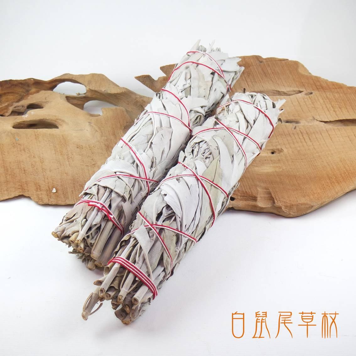 加州白鼠尾草杖 ( White Sage)(長約8~9英吋) ~ 奉獻真誠 喜悅祥和 淨化身心 祝福療癒