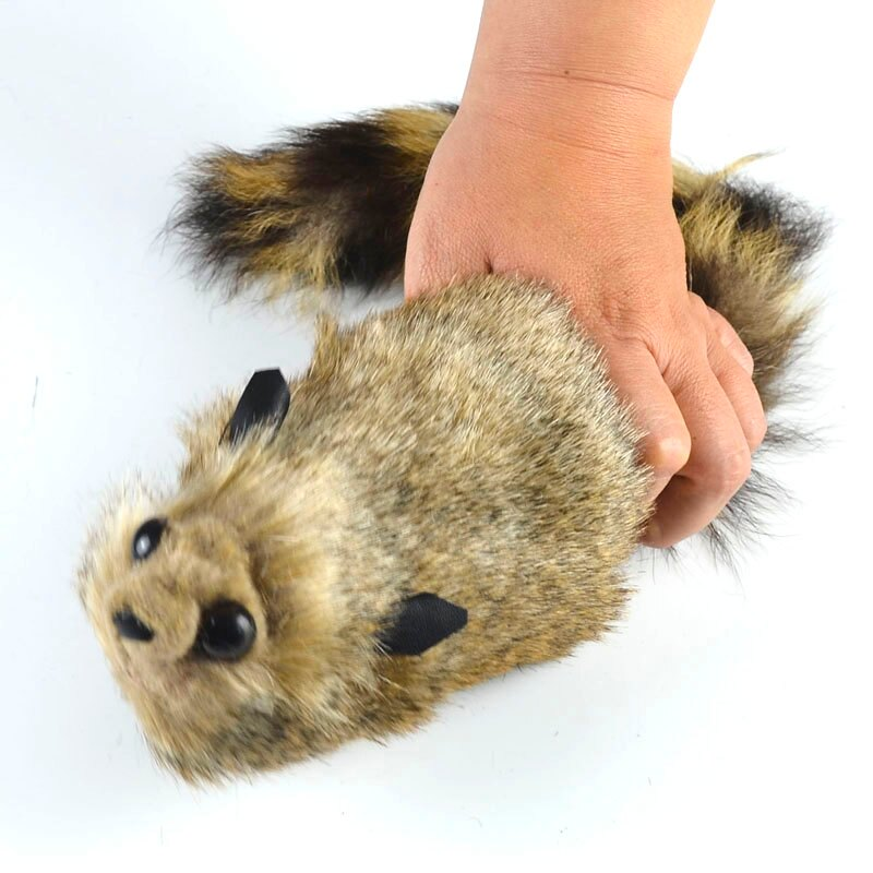 頑皮的浣熊 互動 嚇人 搞笑 整蠱 嚇女生 彈簧松鼠 舞臺魔術道具
