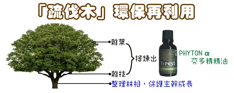 [綠森林] 芬多精隨身噴霧瓶 120ml 三瓶組 芬多精部屋系列 特價中