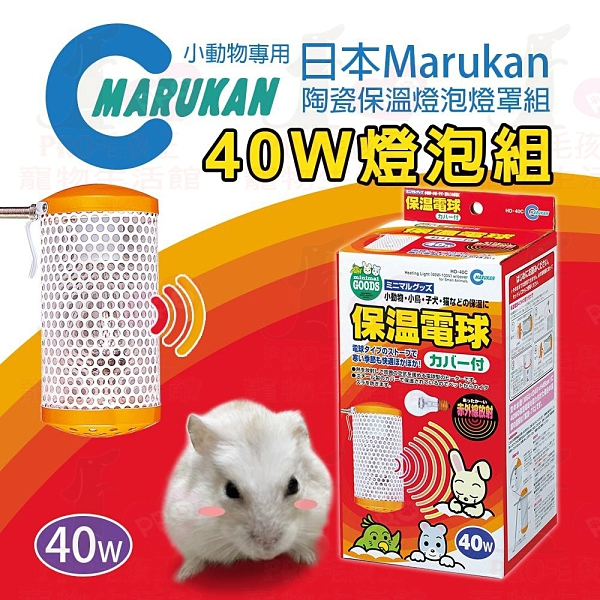 PRO毛孩王 日本Marukan小動物專用陶瓷保溫燈泡燈罩組-40W燈泡+燈罩
