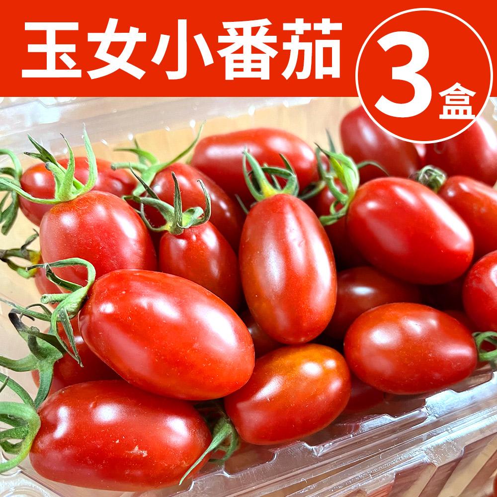 [甜露露]台灣玉女小番茄(每盒600g±10%)