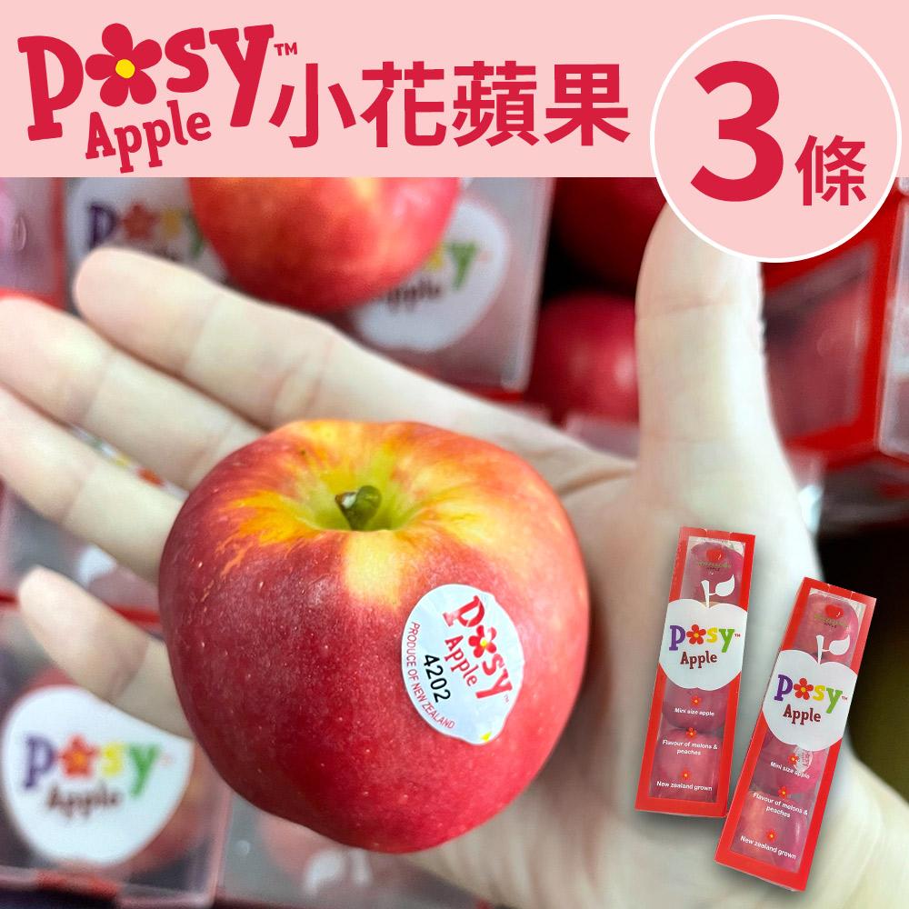 [甜露露]紐西蘭迷你POSY小花蘋果