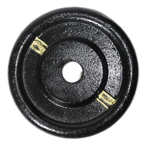 【南紡購物中心】鑄鐵槓片10磅(槓鈴片/啞鈴片/舉重/重訓)