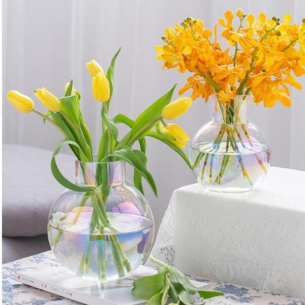 花瓶擺件客廳插花干花裝飾玻璃透明大水養輕奢網紅鮮花簡約ins風 范思蓮恩
